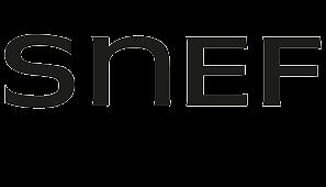 Logo SNEF groupe